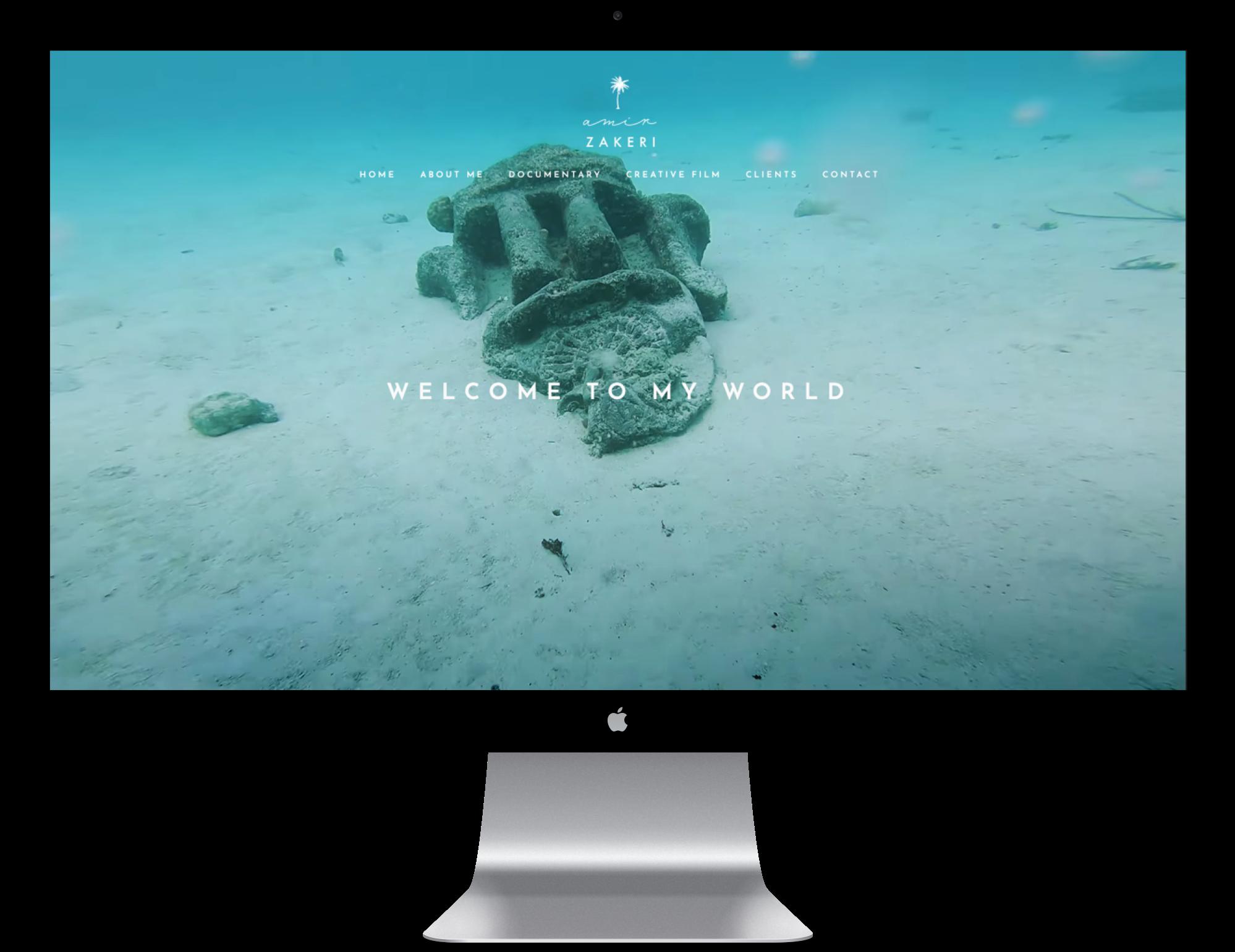 Amir Zakeri Website